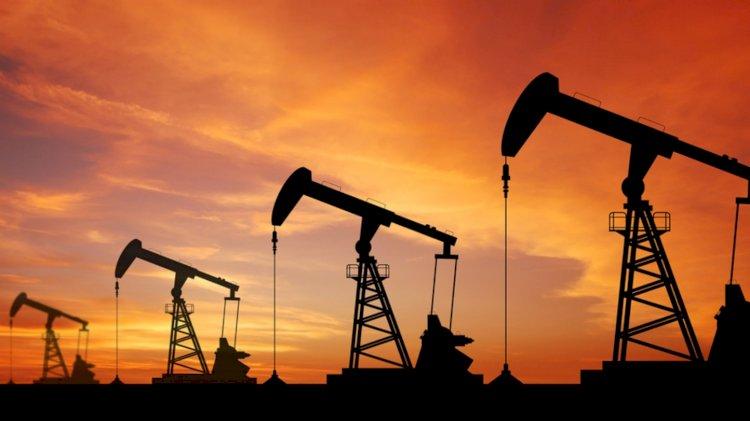 OPEC'in petrol üretimi 2019'da düştü!