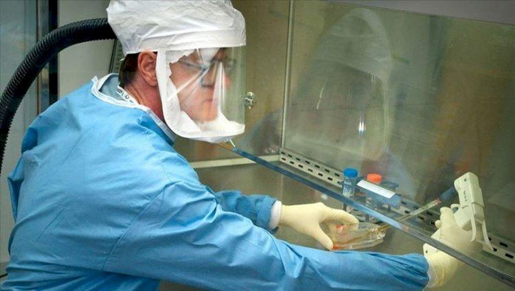 Rusya'da Covid-19 aşı adayının birinci aşama klinik denemeleri tamamladı !